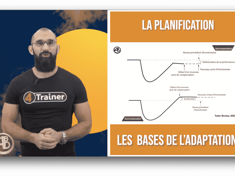 Formation planification de l'entraînement