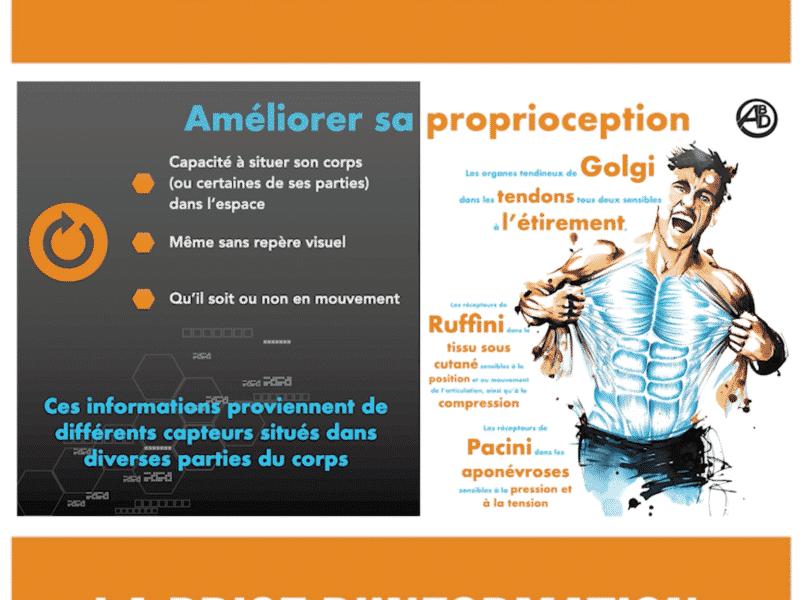 formation proprioception